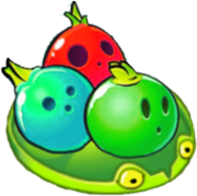 Lily Bowling Bulb