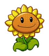 HD Sunflower