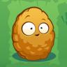 Wall-Nut3