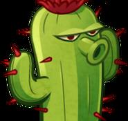 CactusCardImage