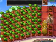 35 five melon-pults at once!