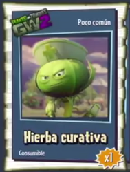 Hierba Curativa - Poco Comun