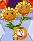 ShieldedTwinSunflower