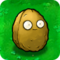 Wall-nut1