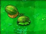 Melon-pult (PvZ)