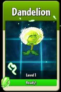 Dandelion (International) Level Up