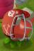 MagnetPlantFootballHelmet