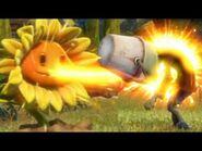 Sunflowershooting
