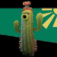 Kaktus grafika na stronie