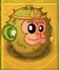 KiwifruitGT