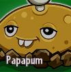CACTUS Gw2 1 Papapum