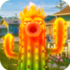 Fire CactusGW1