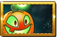 Jack O' Lantern New Premium Seed Packet