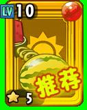 Melonpulta Junior Paquete