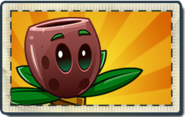 Olive Pit Boosted Seed Packet