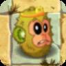 KiwifruitIdle