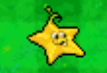 DS Starfruit2