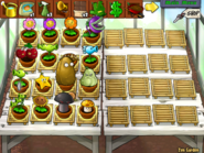 Half Full Zen Garden