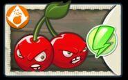 Cherrybombnew