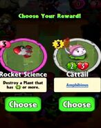 Choice between Rocket Science and Cattail
