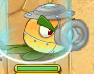 Super Citron attack