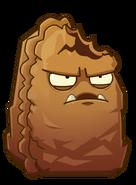 Primal wallnut 3
