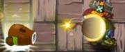 Cococannondroppingthebomb