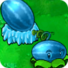 Winter Melon2-1-
