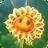 Mystic FlowerGW2