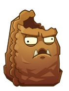Primal wallnut 4