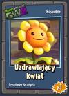 Uzdrawiający kwiat