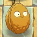 Wall-nut frowning