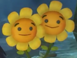 Twin Heal Flower