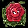 HD Briar Rose