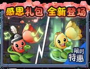 Tuliptrumpeter Advertisement