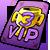 VIP 3 ticket