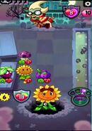 Wild Berry gameplay