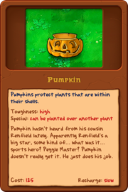 New Pumpkin almanac