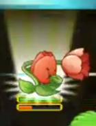 Tulip PF2