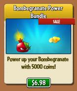 BombgranShop2