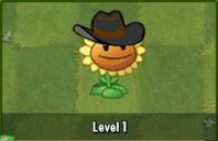 Cowboy greenuxx
