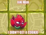 Sad Cookieless) Red Stinger