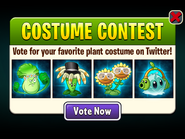 Costume Contest - Bonk Choy, Bloomerang, Twin Sunflower, Iceberg Lettuce