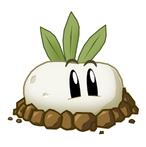 Beet like plant