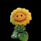 Sunflower HD (BfN)