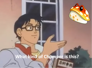 What Chomper