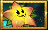 Starfruit New Premium Seed Packet