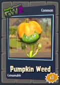 Pumpkin Head Weed GW2
