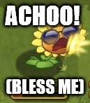 SunSneeze