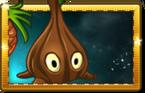 Sap-fling New Premium Seed Packet